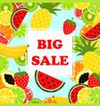 summer banner big sale vector image
