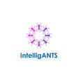 ants gruop together shape circle logo design vector image