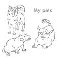 cat dog rat vector image vector image