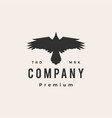 crow raven roar top view fly hipster vintage logo vector image