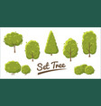 set of abstract stylized trees in flat style vector image