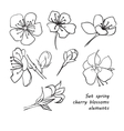 Set of spring cherry blossom flowers Hand drawing vector image
