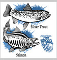 silver trout and salmon fishing on usa vector image vector image