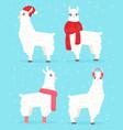 winter style llama alpaca vector image vector image