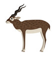 cartoon wild antelope vector image vector image