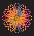 ethnic floral colorful tribal circle mandala vector image vector image