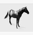 horse gradient vector image vector image