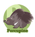 abc cartoon porcupine vector image vector image