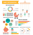 bainfographic vector image vector image