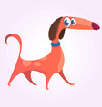 Cartoon cute purebred dachshund icon vector image