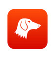 dachshund dog icon digital red vector image vector image