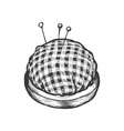 Pin Cushion vector image vector image