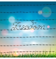 Word freedom written by a barbed wire vector image