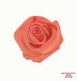 background with rose isolated vector image