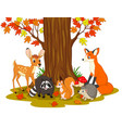 cartoon wild creatures in the forest vector image vector image