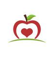healthy food apple icon vector image