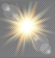 sunlight on transparent background lens flare vector image
