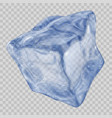 transparent blue ice cube vector image vector image