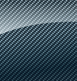 carbon fiber background vector image vector image