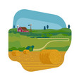 cool flat design element on farming and summer vector image