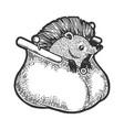 hedgehog in purse metaphor sketch engraving vector image vector image