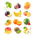sliced fruits vegetarian food agriculture objects vector image vector image