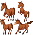 Brown horse in four different poses vector image