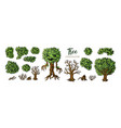 fantasy trees constructor set trees leaves and vector image vector image