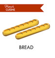 Tasty long bread from french cuisine isolated vector image