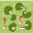 top view a koi fishes or asian carp swimming vector image