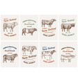 vintage cards farm cattle bulls and cows vector image vector image