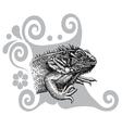 Iguana drawing vector image