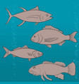 fish icons set outline vector image