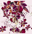beautiful tropical background orchid flowers vector image