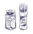 salt shaker glass bottles salting powder vector image