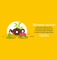 alternative medicine banner horizontal concept vector image