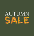 autumn sale yellow leaves of abc autumnal vector image vector image