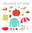 cute set with sweater and autumn elements vector image vector image