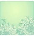 Delicate flowers on green background vector image vector image