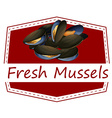 Fresh mussels vector image
