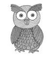 owl zendoodle zen tangle and zen doodle bird vector image