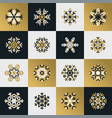 snowflakes of various type and squares vector image