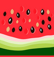 watermelon close up vector image vector image