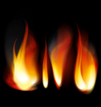 flame tongues vector image