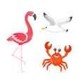 flamingo and crab seagull sea bird characters vector image vector image