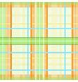 Modern spring plaid pattern vector image vector image