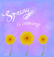 spring lettering design vector image vector image