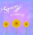 spring lettering design vector image vector image