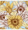sunflowers field seamless pattern vector image vector image