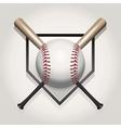 baseball bat homeplate vector image vector image